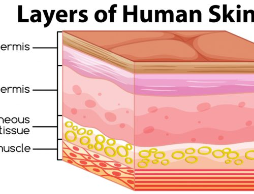 5-Step Guide to Rejuvenate All Skin Layers – From Deep to Superficial